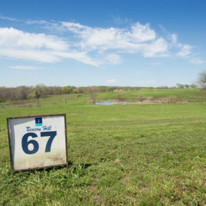 Beacon Hill Lakeview Lot 67