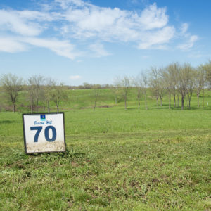 Beacon Hill Lakeview Lot 70