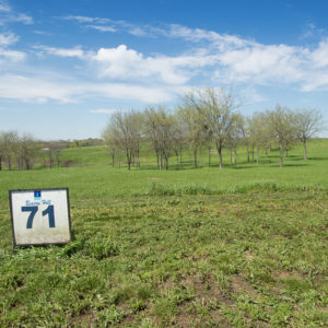 Beacon Hill Lakeview Lot 71