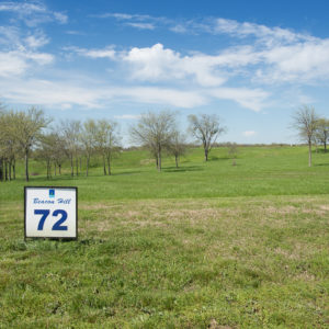 Beacon Hill Lakeview Lot 72